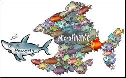evaluating microfinance cqr